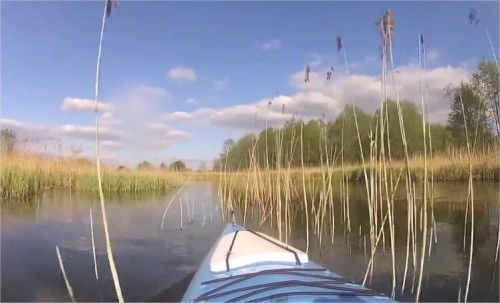 Spływ kajakowy rzeką Czarna Hańcza w okolicy jeziora Wigry na Suwalszczyźnie