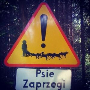 Wakacje 2012 rozpoczęte. Podrożujcie bezpiecznie po Polsce i zwracajcie uwagę na znaki
