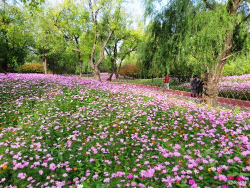 Parki i natura w Pekinie